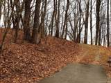 9999 Towhee Trail - Photo 3