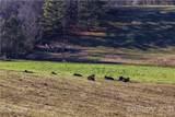 112 Saddle Ridge Drive - Photo 13