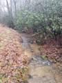 TBD Lyday Creek Road - Photo 12