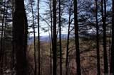 TBD Bear Pen Hollow Road - Photo 3