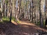 V/L 1 Black Forest Loop - Photo 12
