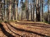 V/L 1 Black Forest Loop - Photo 13