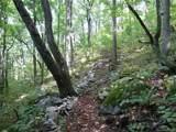 3.72 acres Chesten Mountain Drive - Photo 11