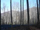 3.72 acres Chesten Mountain Drive - Photo 8