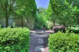 520 Meadowsweet Lane - Photo 44