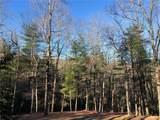 41 Dividing Ridge Trail - Photo 2