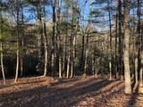 41 Dividing Ridge Trail - Photo 3