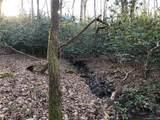 41 Dividing Ridge Trail - Photo 4