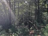 41 Dividing Ridge Trail - Photo 5