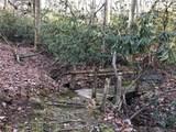 41 Dividing Ridge Trail - Photo 6