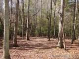 41 Dividing Ridge Trail - Photo 7