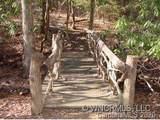 41 Dividing Ridge Trail - Photo 8