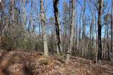 000 White Oak Mountain Road - Photo 13