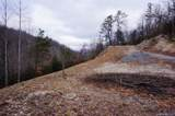 TBD Greenville Highway - Photo 19