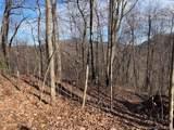 281 Old Bald Mountain Road - Photo 6