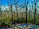 1114 Mills River Way - Photo 2