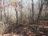 TBD Etowah Mountain Road - Photo 12