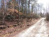 TBD Etowah Mountain Road - Photo 6