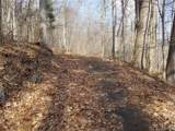 811 Dogwood Trail - Photo 3