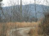 10 Acres Galax Lane - Photo 1