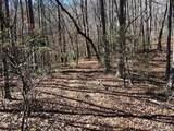 999 Laurel Mountain Trail - Photo 3