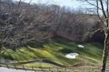 220 Stoney Falls Loop - Photo 5