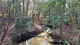 12.95 acres on Mission Road - Photo 4