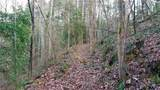 12.95 acres on Mission Road - Photo 5
