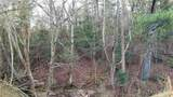 12.95 acres on Mission Road - Photo 7