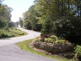 TBD Red Wolf Drive - Photo 6