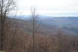 1003 Wolf Pen Cliffs Road - Photo 11