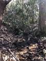 2.89 Acres Lady Slipper Trail - Photo 12