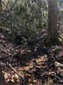 2.89 Acres Lady Slipper Trail - Photo 13