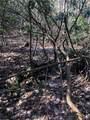 2.89 Acres Lady Slipper Trail - Photo 14