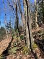2.89 Acres Lady Slipper Trail - Photo 15