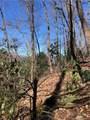 2.89 Acres Lady Slipper Trail - Photo 16