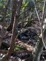 2.89 Acres Lady Slipper Trail - Photo 18
