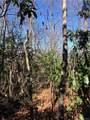 2.89 Acres Lady Slipper Trail - Photo 19