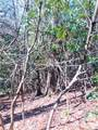 2.89 Acres Lady Slipper Trail - Photo 4