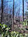 2.89 Acres Lady Slipper Trail - Photo 7