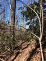 2.89 Acres Lady Slipper Trail - Photo 9