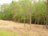 6.5 ac Hwy 55 Highway - Photo 1