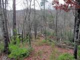 Lot #12 Rock Moss Drive - Photo 1