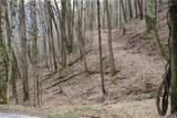 Lot 12 Low Gap Road - Photo 1