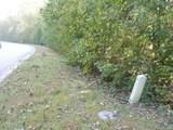 LOT 29 Cottonwood Drive - Photo 6