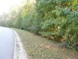 LOT 29 Cottonwood Drive - Photo 7