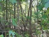 LOT 29 Cottonwood Drive - Photo 8