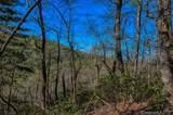 5 Ladys Fern Trail - Photo 1