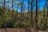 7 Ladys Fern Trail - Photo 1