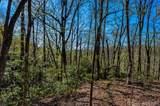 8 Ladys Fern Trail - Photo 1